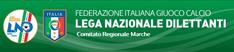 FIGC-LND Comitato Regionale Marche